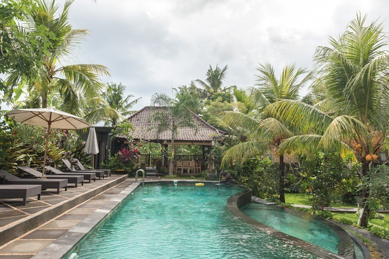 Infinite swimming pool and palmtrees in Bucu Guest House - Ubud, Bali