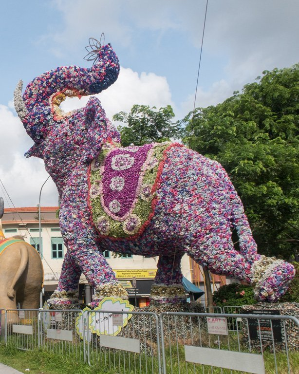 Flower Elephant in Little India, Singapore