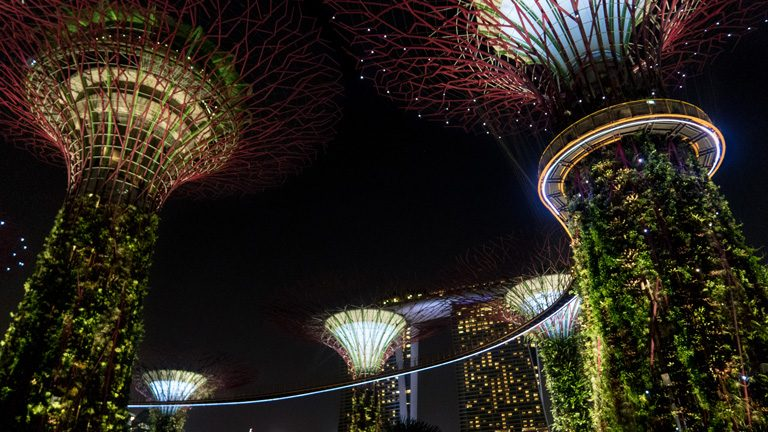 Light show in the Super Trees of Gardens by the Bay, with Marina Bay Sands Hotel in the background, Singapore