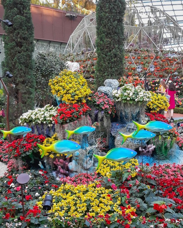 Coloured flowers and decorative blue fish at the Flower Dome, Singapore