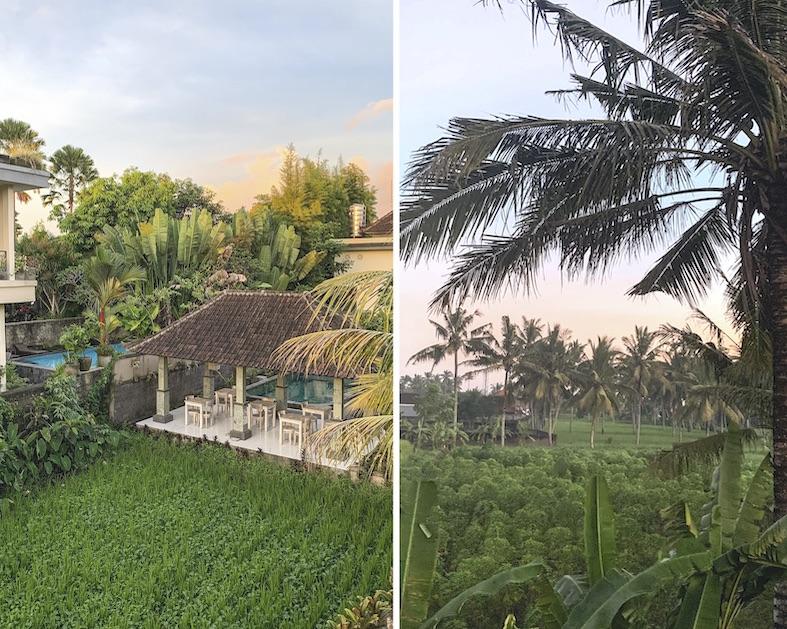 Vistas desde la ventana de nuestras casas en Bali We Collect Postcards