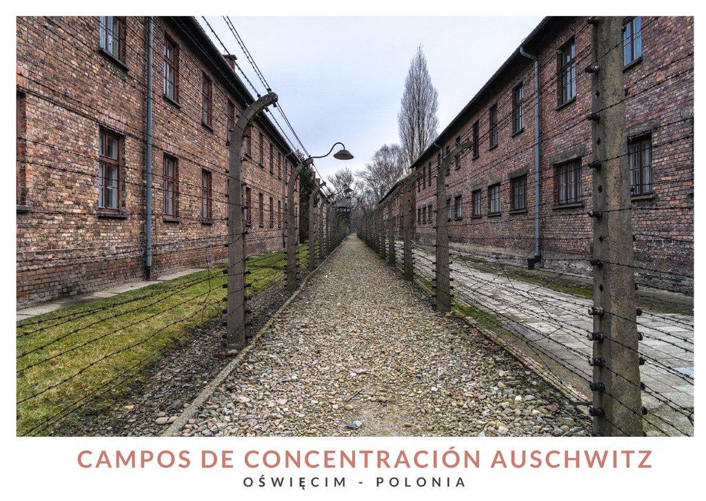 Cómo visitar los campos de concentración de Auschwitz