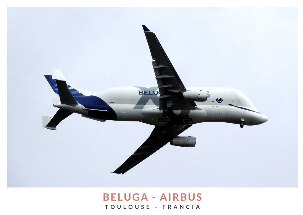 Vvión de carga de grandes dimensiones (Airbus A300-600ST), Beluga